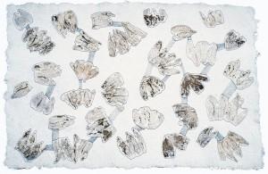 Konnex-Physalis, 2007, 60x80 cm